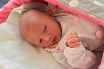 První pražské dítě v novém roce se narodilo dvě minuty po půlnoci v porodnici Nemocnice Na Bulovce. Děvče Ema váží 2650 gramů a měří 46 centimetrů.