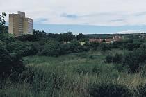 Území napravo od budovy branické Subterry má být zastavěno obytnými domy. Území před ní má být zastavěno kancelářským komplexem.