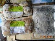 Kontrola Státní veterinární správy ve vietnamské tržnici SAPA v Praze.