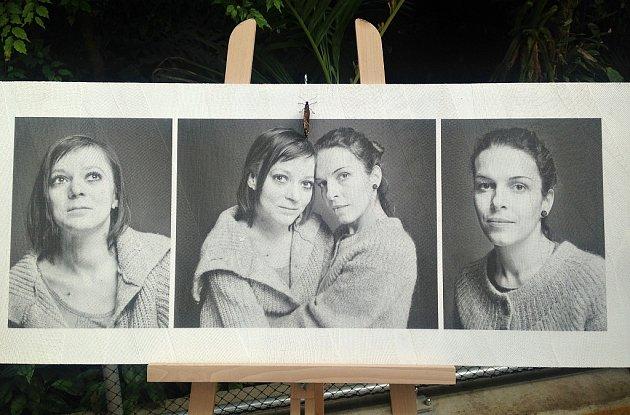 Zvýstavy fotografií Jiřího Langpaula.