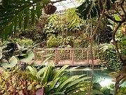 V Botanické zahradě v Troji se křtila vína ročníku 2012