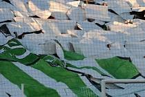 Zelenobílí vyrazí k záchranářskému duelu do Českých Budějovic.