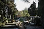 Hřbitov v Hostivaři.