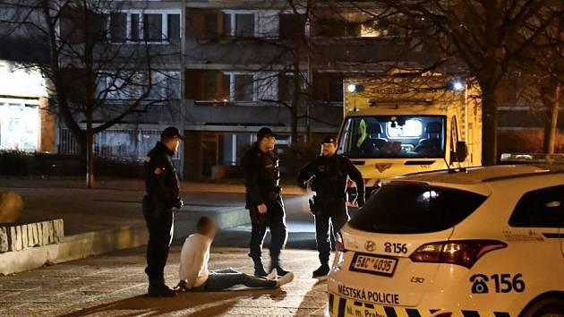 K hlášené hromadné rvačce vyjížděli do Stodůlek policisté i pražští strážníci.