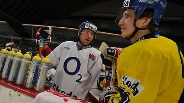 Česká reprezentace se připravuje v holešovické Sportovní hale.