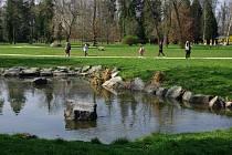 Park Stromovka v pátek hostí slavnostní vyhlášení soutěže Duše stromů.