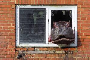 Hroch Slávek  jeden ze symbolů katastrofální povodně v roce 2002, uhynul loni v říjnu.