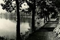 Z výstavy Antonín Dvořák: Inspirace přírodou