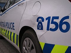 Mladík naboural strážníkům vůz.