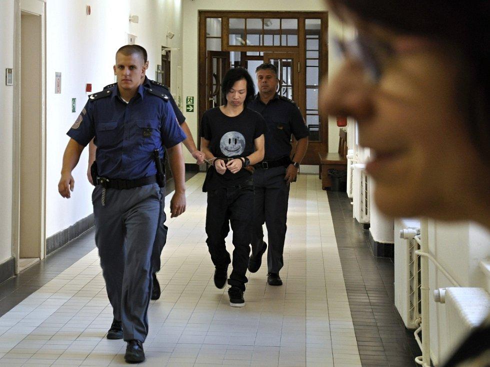 Zmírnění trestu z deseti na sedm let vězení se dočkal u odvolacího senátu Vrchního soudu v Praze Quang Huy Tran z Vietnamu, který 13. prosince 2014 v Holušické ulici na Chodově v noci v opilosti napadl 23letou ženu - podle znalců kvůli sexuální deviaci.
