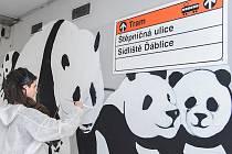 Josefína Jonášová při malování obrazu Pandemie v podchodu metra Ládví.
