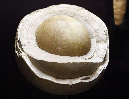 ARAGONITOVÁ KOULE (JESKYNNÍ PERLA). Ve výstavních prostorách Geosvět v Londýnské ulici v Praze na Vinohradech bude otevřena 14. února 2008 stálá výstava minerálů a fosílií.