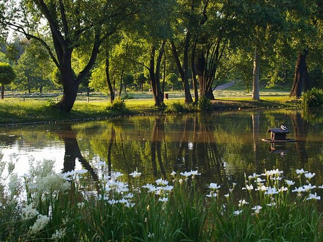 Ve Stromovce mají vzniknout dva nové rybníky s ostrovem. Pro děti bude k dispozici malý prám