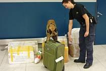 Ruzyňští celníci začali využívat další účinný prostředek na kontroly převozu finanční hotovosti, služebního psa.
