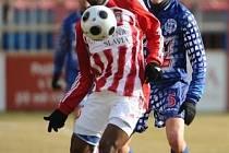 Kamerunec Herve Xavier Zengue si se zmrlým trávníkem poradil.
