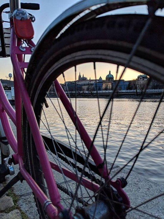 Růžové kolo. Ilustrační foto.