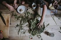 Vyzkoušejte v neděli bylinkovou jógu.