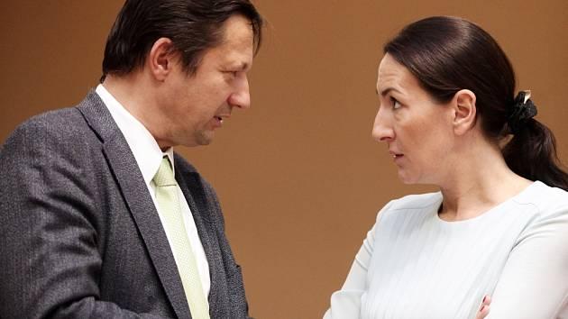 Jednání o koalici na magistrátu začínají v úterý 19. ledna 2016 zase od začátku. Aktivní budou i lídři Trojkoalice a ODS Petr Štěpánek a Alexandra Udženija.