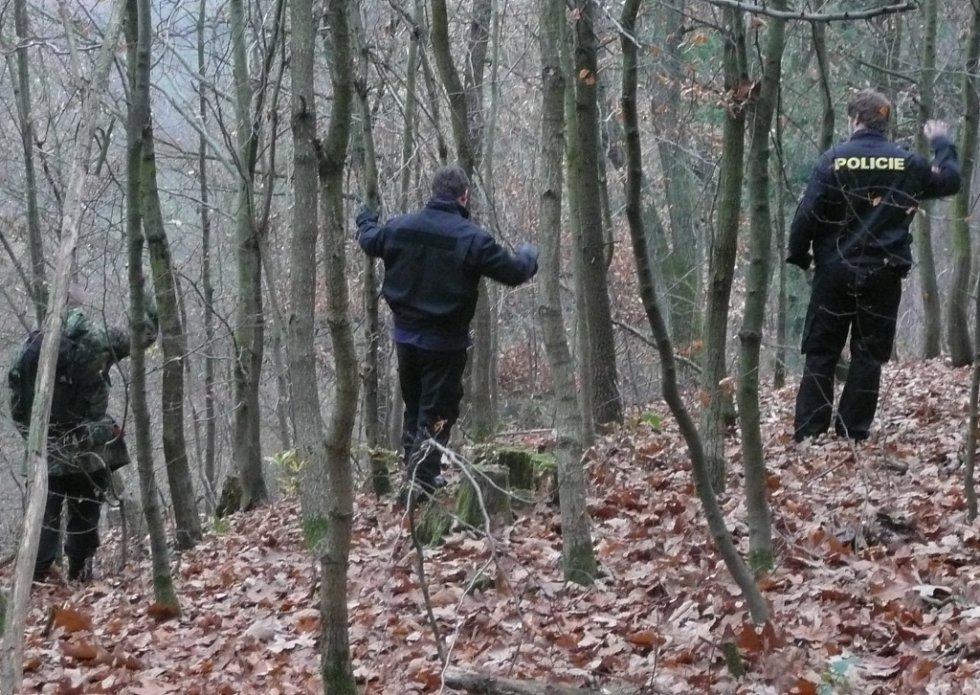 Pátrací akce v okolí Dolních Břežan.
