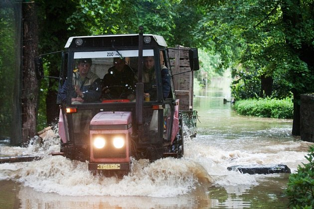Rozvodněná Vltava počátkem června 2013 zatopila spodní část zoologické zahrady v pražské Troji.