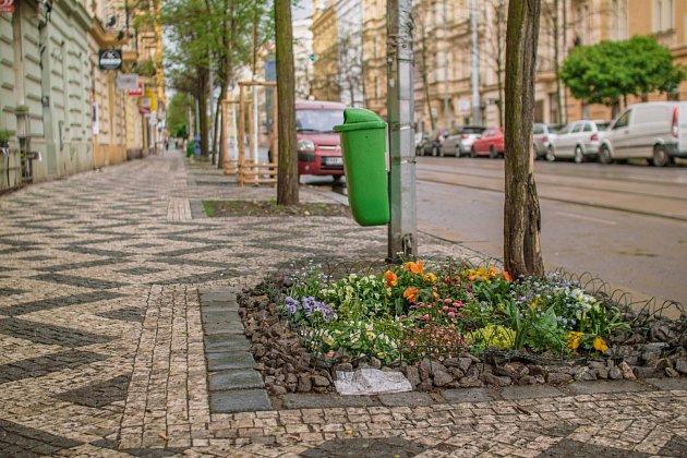 Street Gardening.