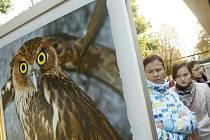 Zoo Praha slavila 81. narozeniny