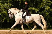 Vanda Bělinová na svém koni Bandolero XLIV.
