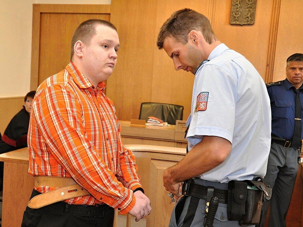 Z pokusů o dvě vraždy bezdomovců se před Vrchním soudem v Praze zpovídal 24letý Jan Mokrý. 12. dubna 2014 v noci napadl s nožem v ruce spícího bezdomovce v Libni, 28. června 2014 pak pořezal na ruce spícího bezdomovce v parku před hlavním nádražím.