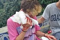 Na pražské Letné podle skateboardistů řádí skupina mladistvých agresorů, která je mlátí a okrádá. Incident řeší i policie.