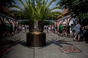 Tisíce lidí navštívili 6. července pražskou zoo.