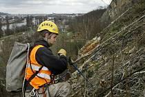 Horolezci čistili dnes Branickou skálu v Praze od kamenů, u kterých hrozí potenciální pád.