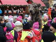 S blížícími se Vánoci společnost Pražské služby zahájila edukativní kampaň Kam s ním?