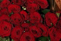 Rozsudek k omluvě s pugétem růží neprošel.