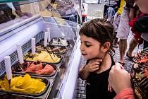 Akce, která už dopředu nadchne děti i dospělé. To je festival zmrzliny, který se v neděli koná na holešovickém Výstavišti.