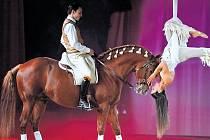 ROK S UŠLECHTILÝMI PLEMENY. V představení Čtyři roční období si člověk a kůň připomenou svazek, který je poutá odnepaměti.