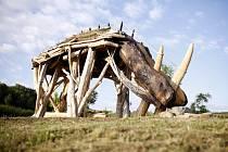 Praha má nově největší skulpturu nosorožce na světě.
