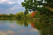 Milíčovský rybník.
