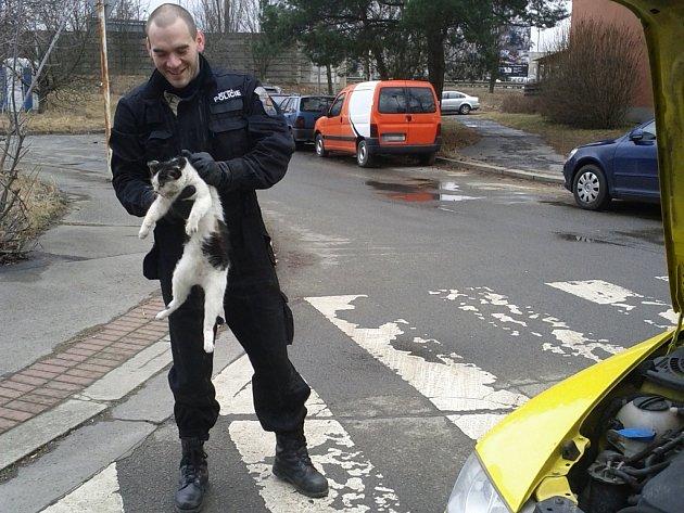 Záchrana zraněné kočky, která uvízla nad ramenem přední nápravy osobního automobilu.