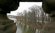 BRUSLAŘSKÁ DRÁHA, OSVĚTLENÉ STROMY... Nesmaže příliš razantní rekonstrukce ducha místa?