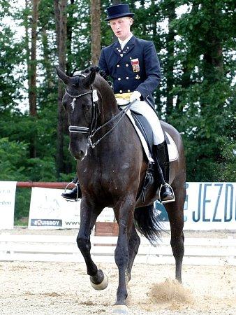 Mezi sedmi disciplínami, které jsou oficiální součástí programu světových jezdeckých her, je idrezura. Mezinárodních závodů se za Čechy účastní například Fabricio Sigismondi.