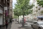 Návrh koncepční studie revitalizace Vinohradské ulice v Praze.