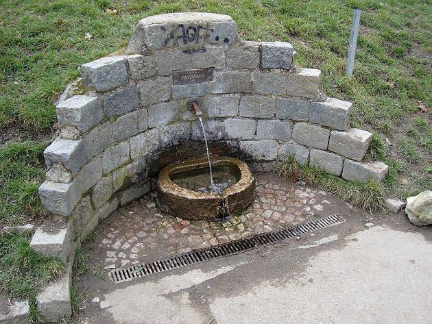 Petřínka, studánka na Petříně, je jednou z asi šesti studánek v Praze, které se dají považovat za pitné.