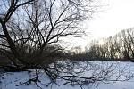 Území na hranici Modřan a Komořan by mělo být ponecháno jako záplavové.