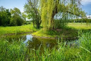 Krajinný park v Ladech na území mezi Biologickým rybníkem, Xaverovským rybníkem a dálnicí D8.