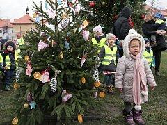 Akce Zdobit může každý – Zdobit bude každý. Soutěž o nejkrásnější vánoční stromeček v Loretánské zahradě.