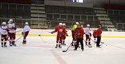 Hokejisté Slavie Praha jsou od neděle na ledě a zahájili tak finální část letní přípravy.