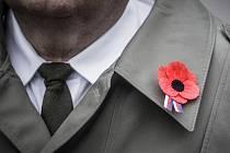 Symbolem dne veteránů je Vlčí mák. Ilustrační foto.