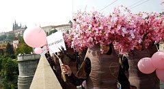 Metropolí prošel 1. května 2009 Májový průvod rozkvetlých třešní upozorňující na nedostatek lásky a její důležitost.