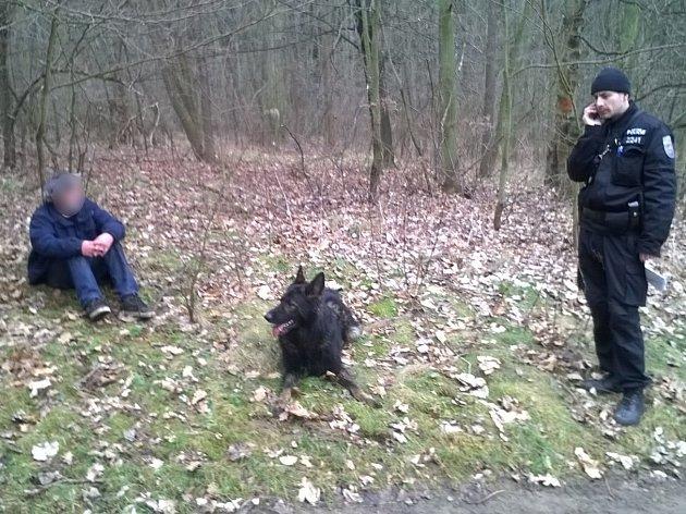 Policii během pátrání pomohl pes