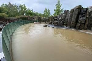 Zatopený bazén lachtanů v pražské zoo po bleskové povodni 14. června 2020.